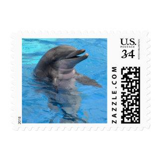 Delfín o masopa (la Florida) Estampillas