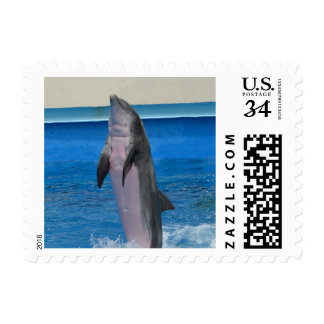 Delfín o masopa (la Florida y Mississippi) Sello Postal