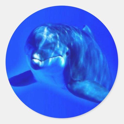 Delfín Pegatina Redonda