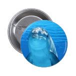 Delfín Pin Redondo 5 Cm