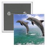 Delfin Pins
