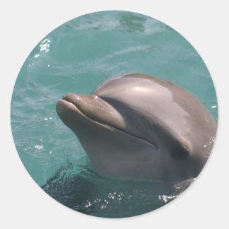 Delfín que hace muecas a los pegatinas pegatina redonda