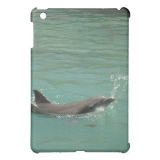 Delfín que juega la bola