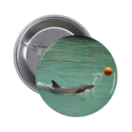 Delfín que juega la bola pins