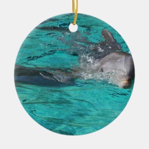 delfín que sale de la página llena del agua del ornatos
