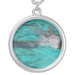 delfín que sale de la página llena del agua del tr grimpola personalizada