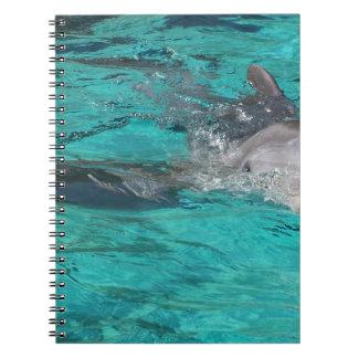 delfín que sale de la página llena del agua del tr libretas espirales