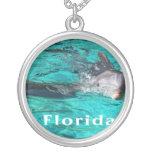 delfín que sale del agua clara florida.jpg del tru grimpola