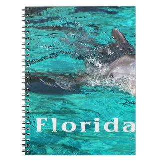 delfín que sale del agua clara florida jpg del tru libro de apuntes