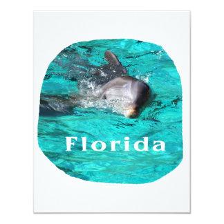 delfín que sale del agua clara la Florida del Anuncio