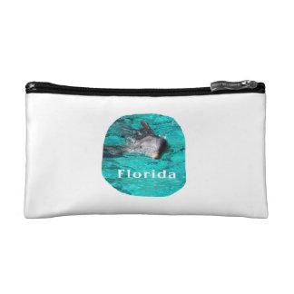 delfín que sale del agua clara la Florida del trul