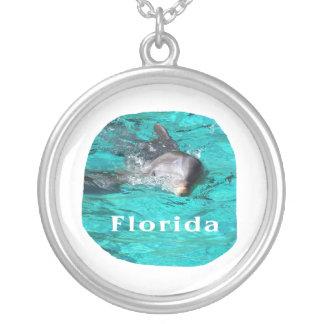 delfín que sale del agua clara la Florida del trul Joyería