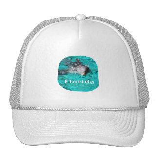 delfín que sale del agua clara la Florida del trul Gorros Bordados