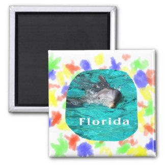 delfín que sale del agua clara la Florida del trul Imán De Frigorifico