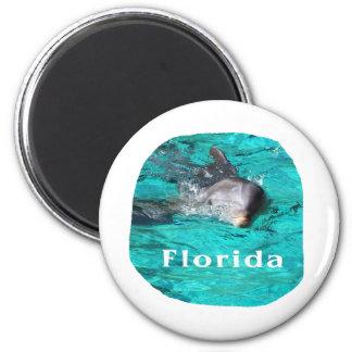 delfín que sale del agua clara la Florida del trul Imán Para Frigorifico
