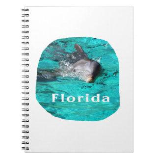 delfín que sale del agua clara la Florida del trul Cuadernos