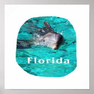 delfín que sale del agua clara la Florida del trul Poster
