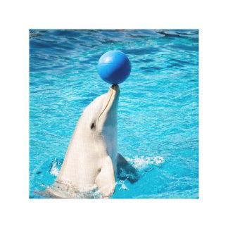 Delfín que tiene una bola impresión en lienzo estirada