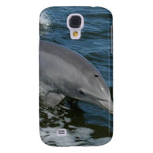 Delfín salvaje