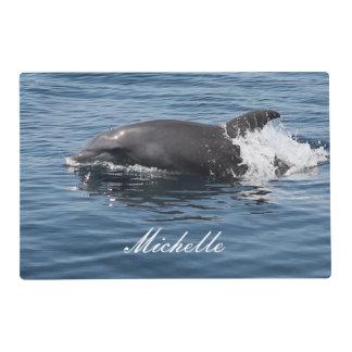 Delfín Salvamanteles