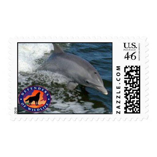 Delfín Envio