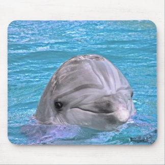 Delfín sonriente alfombrilla de ratones