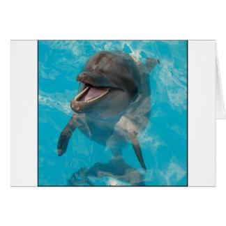 Delfín sonriente felicitacion