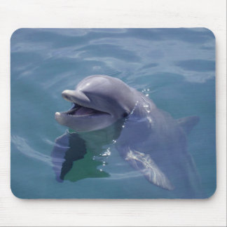 Delfín sonriente tapetes de ratones