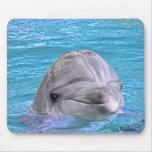 Delfín sonriente tapetes de ratón