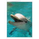 Delfín sonriente tarjetas