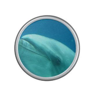 Delfín subacuático altavoz