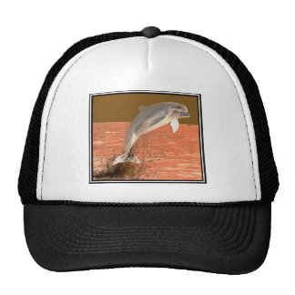 Delfín Sun Gorras De Camionero