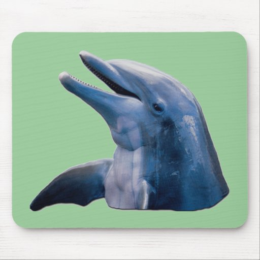 Delfín Tapete De Raton