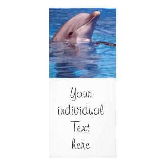 delfín lonas personalizadas