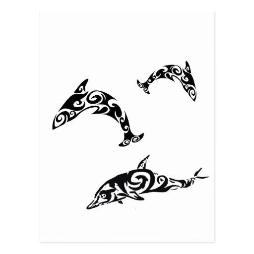 Delfín tribal Sealife.png Postal