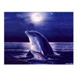 Delfín y bebé postal