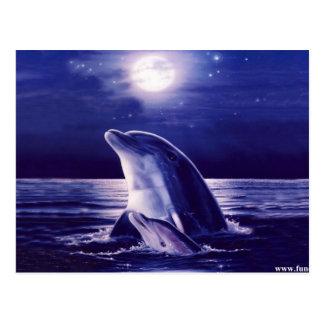 Delfín y bebé tarjeta postal