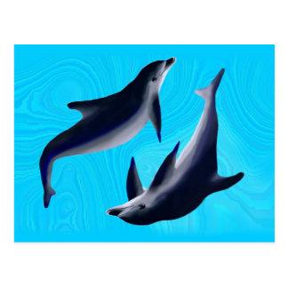Delfine Postkarten