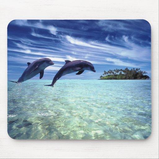 Delfínes a montones alfombrilla de ratones