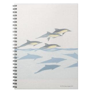 Delfínes comunes cuadernos