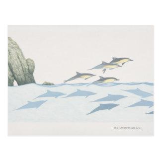Delfínes comunes tarjetas postales
