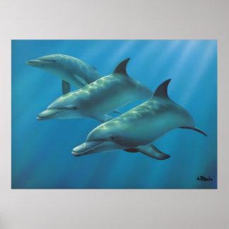 Delfínes de Andrew Patsalou Impresiones