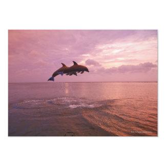 """Delfínes de Bottlenosed que saltan en la puesta Invitación 5"""" X 7"""""""