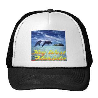 Delfínes de Key West la Florida Gorro