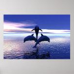 Delfínes de la madrugada poster