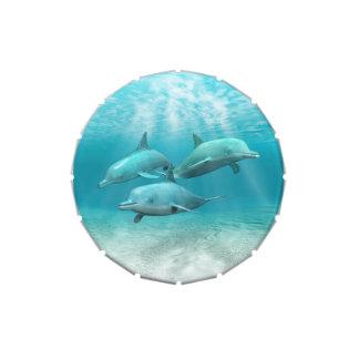 Delfínes de la natación latas de dulces