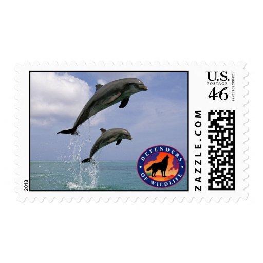 Delfínes de salto sellos