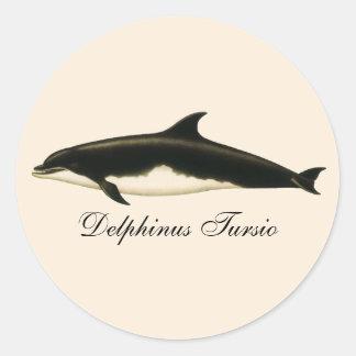 Delfínes del vintage, animales marinos y mamíferos pegatina redonda