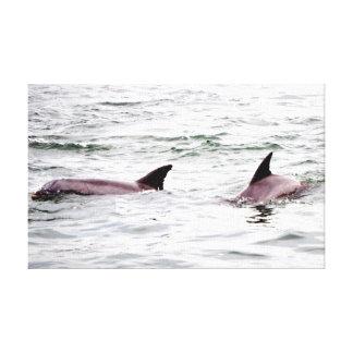 Delfínes en el juego impresion de lienzo