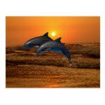Delfínes en la puesta del sol postal